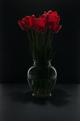 Tulips, alternate take