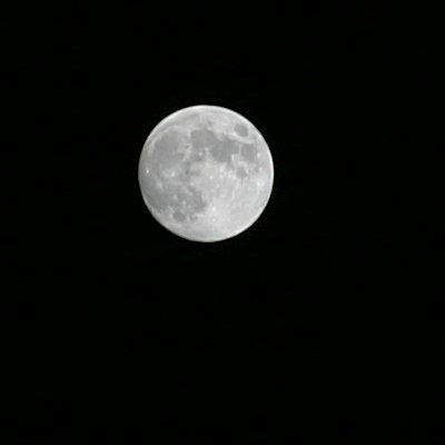The moon, properly exposed this time. 100mm Lens, f11, 1/100 sec ISO 100.