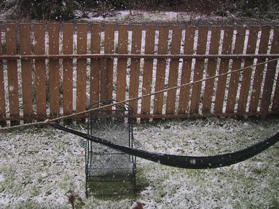 Snow on the hammock