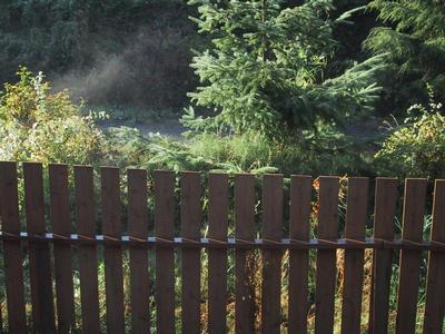 Steam rising off the fence and path, on a cold morning after rain at night.